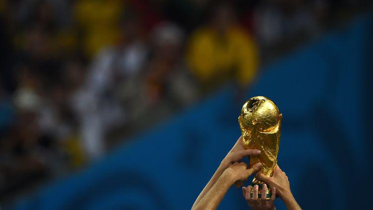 Les joueurs allemands brandissent la Coupe du monde après leur victoire face à l'Argentine en finale, le 13 juillet 2014, à Rio de Janeiro (Brésil). (PEDRO UGARTE / AFP)