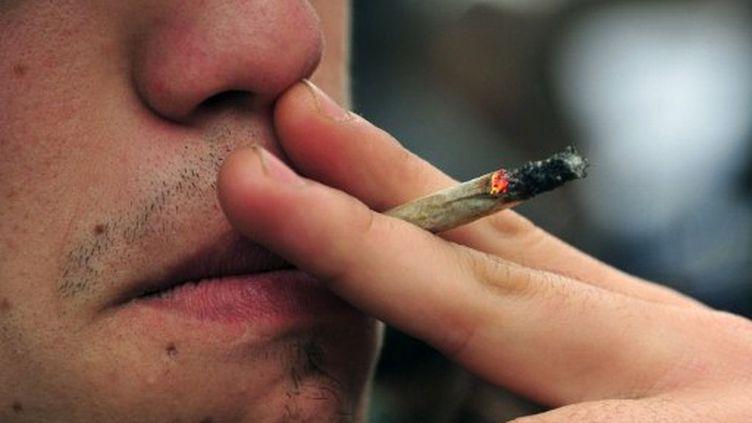 Le cannabis revient dans la campagne (AFP PHOTO / Martin BERNETTI)