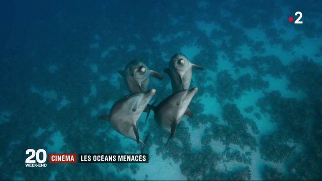 Cinéma : Bleu, ode aux océans menacés