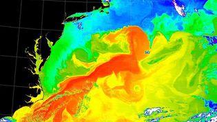Image obtenue par le spectroradiomètre de la Nasa du Gulf Stream sur l'océan Atlantique. (NASA / NASA / AFP)