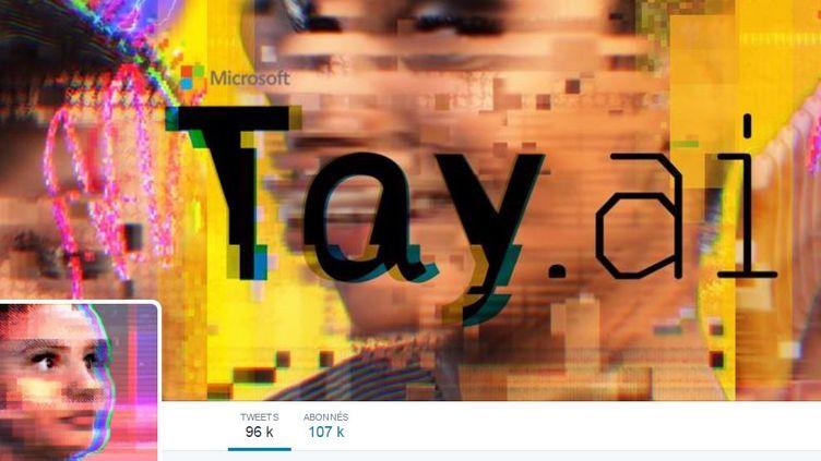 """Capture d'écran du compte Tay.ai, le """"chatrobot"""" conçu par Microsoft, le 25 mars 2016. (TAY.AI / MICROSOFT)"""