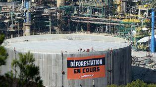 Les associations environnementales sont très opposées à la conversion de l'usine Total de La Mède en bioraffinerie. (BORIS HORVAT / AFP)