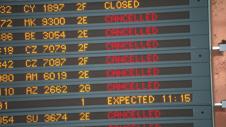 Vols annulés au départ de l'aéroport Roissy-Charles de Gaulle, le 11 juin 2013. (FRED DUFOUR / AFP)