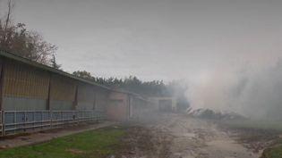 Sur la question des pesticides, les agriculteurs se disent de plus en plus victimes d'insultes et de violences. Dans la Drôme, une série d'incendies inquiète fortement la profession. (France 2)