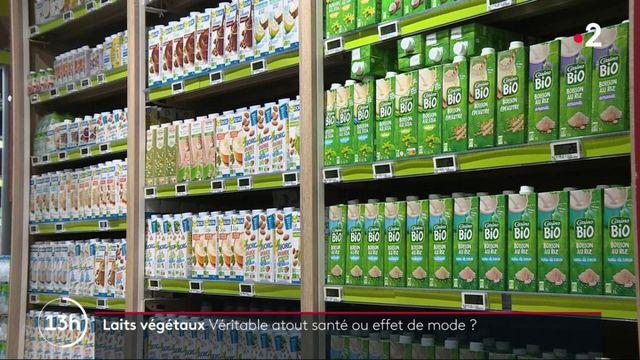 Alimentation : zoom sur les laits végétaux, les nouveaux chouchous des Français