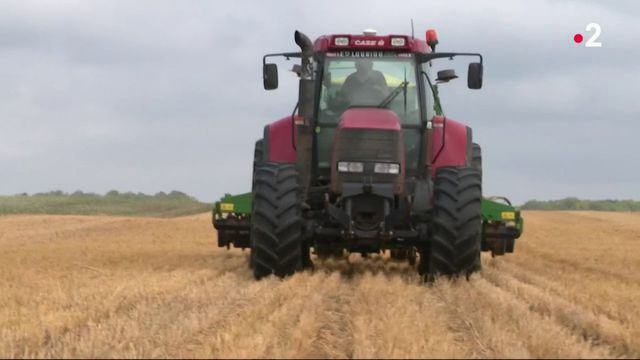 Un nouveau modèle de culture des sols pour les agriculteurs