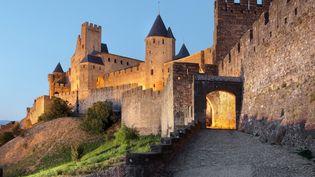 La cité médiévale de Carcassonne (Aude). (MANUEL COHEN / MANUEL COHEN)