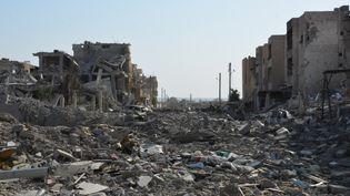 Les ruines de Raqqa (Syrie), le 22 octobre 2017. (YOUSSEF RABIH YOUSSEF / EPA)