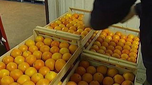 Gaspillage alimentaire : la grande distribution sommée de redoubler d'efforts