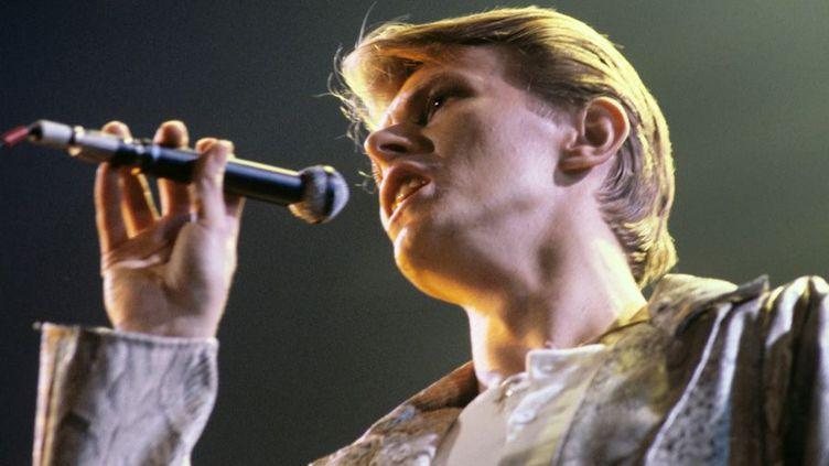 David Bowie en concert à Francfort le 14 mai 1978  (Hans H. Krimer / DPA / MAXPPP)