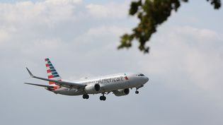 Un Boeing 737 Max 8 s'apprête à atterrir à l'aéroport international de Miami, en Floride, le 12 mars 2019. (JOE RAEDLE / GETTY IMAGES / AFP)