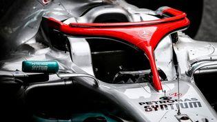 Le halo d'une voiture de Formule 1 en 2019. (ANTONIN VINCENT / DPPI MEDIA)