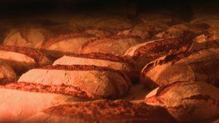 Dans le Var, un couple produit son propre pain, à partir des céréales anciennes qu'ils font pousser dans leur champ. (FRANCE 2)