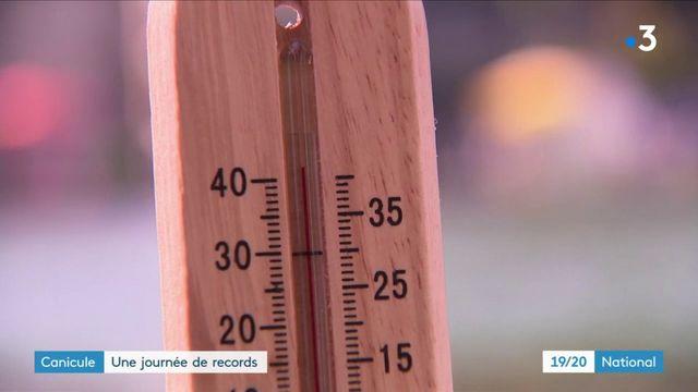 Canicule : le nord de la France pulvérise tous les records