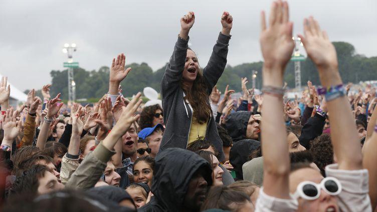 Le public des Solidays, le 28 juin 2014 à Paris. (THOMAS SAMSON / AFP)
