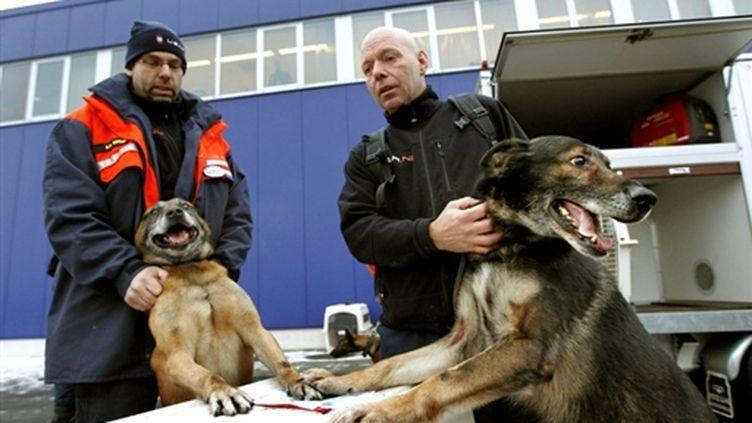 Une équipe de secours Hollandaise et leurs chiens à l'aéroport Eindhoven avant leur départ pour Haïti le 14 janvier 2010 (AFP. E. Oudenaarden)
