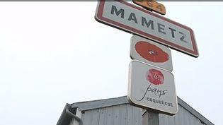 Depuis le 1er janvier, la France compte 200 nouvelles communes, issues du regroupement de nombreux villages. (France 3)