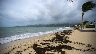 Des vents violents pourraient frapper les îles de Saint-Martin et Saint-Bathélemy, le mardi 19 septembre 2017. (Photo d'illustration) (LIONEL CHAMOISEAU / AFP)