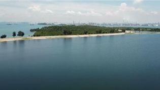 Au large de Singapour, une île artificielle accueille tous les déchets produits par les habitants de la mégalopole. Une curieuse méthode écologique, devenue une attraction touristique pour certains habitants de l'île. (FRANCE 2)
