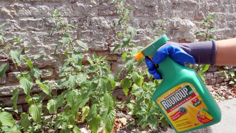 L'herbicide Roundup de Monsanto (Bayer), à Berlin, en Allemagne, le 22 juin 2019. (XAMAX / DPA)