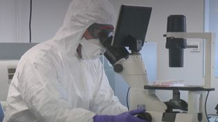 Coronavirus : les chercheurs traquent les mutations du virus. (Capture d'écran/France 2)