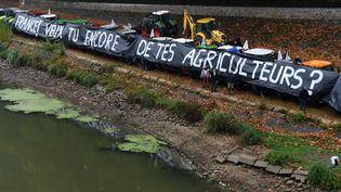 Manifestation des agriculteurs du Maine-et-Loire, à Angers pour protester contre la baisse de leur revenu et contre les attaques dont ils sont victimes concernant l'utilisation de pesticides, le 8 octobre 2019. (JOSSELIN CLAIR / MAXPPP)