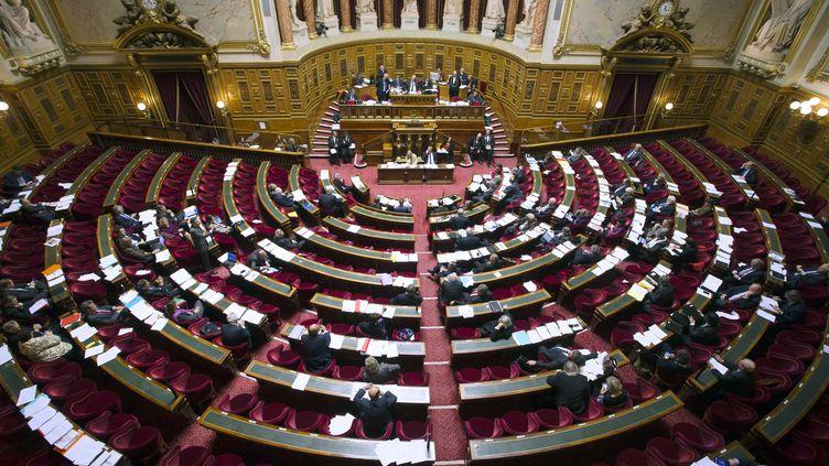 Le Sénat en séance, à Paris, le 13 novembre 2012. (JOEL SAGET / AFP)
