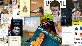 Cadeaux pour Noël : les livres recommandés par la rédaction de Culturebox  (Culturebox)