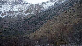 Deux jeunes touristes, une Danoise et une Norvégienne, ont été retrouvées mortes dans une zone montagneuse du sud du Maroc, à deux heures du village d'Imlil, le 17 décembre 2018. (FADEL SENNA / AFP)