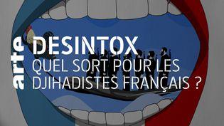 Désintox. Rapatriement des djihadistes français : différents sons de cloche au sein du gouvernement. (ARTE/LIBÉRATION/2P2L)
