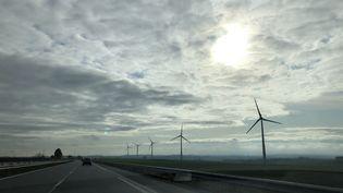 Des éoliennes en bordure de l'A26, en Picardie, le 16 novembre 2019 (AURÉLIEN ACCART / FRANCEINFO / RADIO FRANCE)