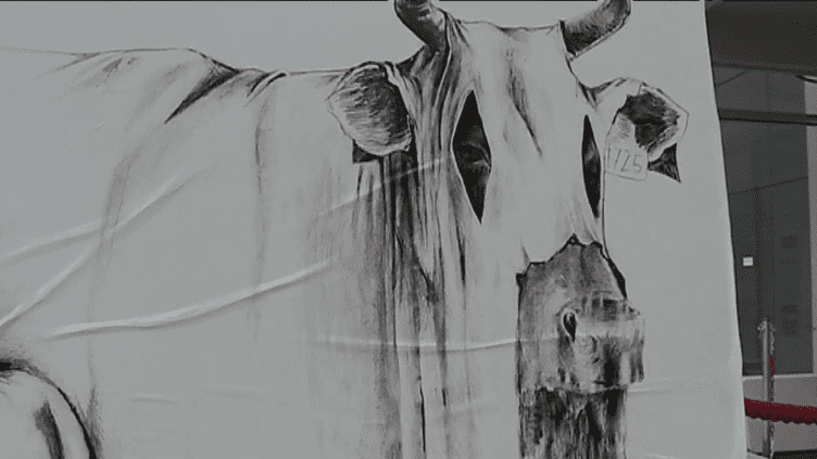 Un ghost animal de d'Agrume aux Halles de Lyon Paul Bocuse  (France 3 / Culturebox)
