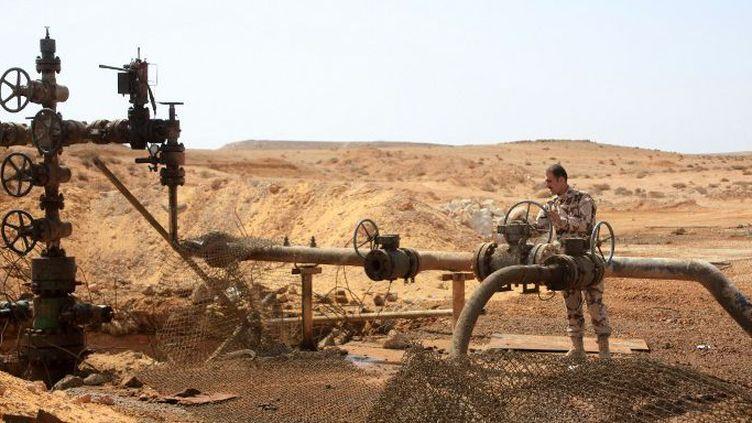 Champ pétrolier de Jazal, près de palmyre, aux mains de l'armée syrienne, en mars 2015. (AFP/STR)