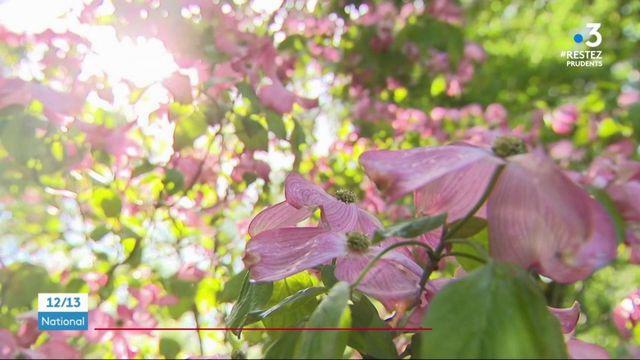 Vosges : un jardin privé attend avec impatience la réouverture