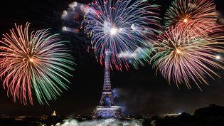 Le feu d'artifice du 14 juillet 2019, à Paris. (KARINE PIERRE / HANS LUCAS / AFP)