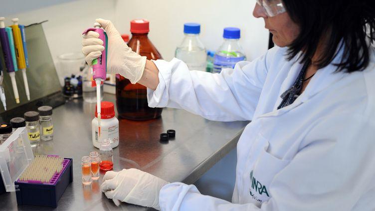 Des chercheurs analysent la présence de bisphénol A dans la nourriture, àSaint-Martin-du-Touchprès deToulouse, le 4 avril 2015. (REMY GABALDA / AFP)