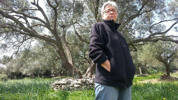 (Fabienne Maestracci, productrice d'huile d'olive à Bonifacio, dans son oliveraie © RF / Sébastien Baer)