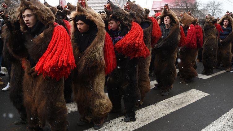 Des habitants de la ville de Comanesti, dans l'est de la Roumanie, paradent déguisés en ours pour célébrer le passage à l'année 2016, mercredi 30 décembre 2015. (DANIEL MIHAILESCU / AFP)