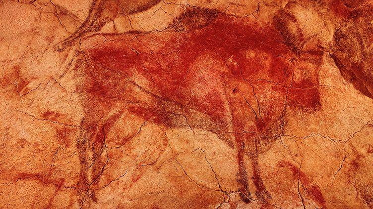 Quelques visiteurs vont pouvoir de nouveau voir les bisons de la grotte d'Altamira en Espagne.  (Gianni Dagli Orti / The Art Archive / The Picture Desk / AFP)
