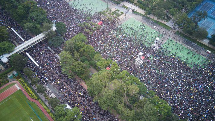 Des manifestants dans le parcVictoriaà Hong Kong, le 16 juin 2019. (EYEPRESS NEWS / AFP)