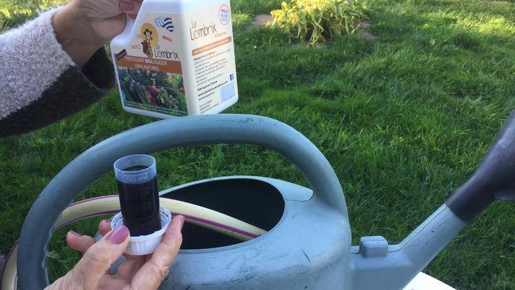 Le thé de compost ne s'utilise surtout pas pur. Ce engrais naturel est concentré, il doit être dilué. (ISABELLE MORAND / LE LOMBRIX / RADIO FRANCE)