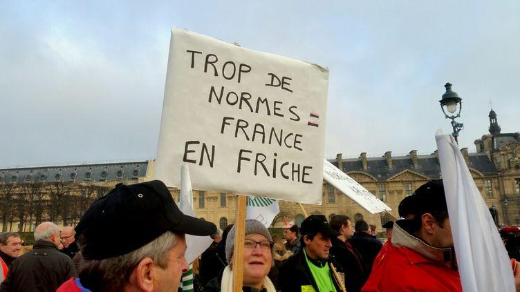Près de 400 agriculteurs ont manifesté devant le Carroussel du Louvre, mardi 19 décembre 2017, à l'appel de la FNSEA. (BENJAMIN ILLY / RADIO FRANCE)