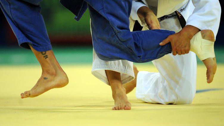 Le judo est en grande difficulté (CHRISTOPHE SIMON / AFP)