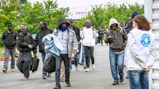 Des migrants évacués d'un camp par des policiers, à Calais (Pas-de-Calais), le 2 juin 2015. (PHILIPPE HUGUEN / AFP)