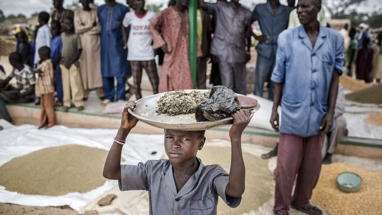 Un enfant porte sur sa tête des provisions dans le village de Sabon Machi, au Niger, le 16 août 2016. (LUIS TATO / AFP)