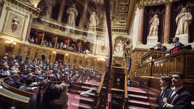 L'hémicycle du Sénat lors d'une session le 17 novembre 2016 à Paris. (LIONEL BONAVENTURE / AFP)