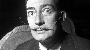 Portait de l'artiste Salvador Dali, le 29 avril 1954. (LEEMAGE / AFP)