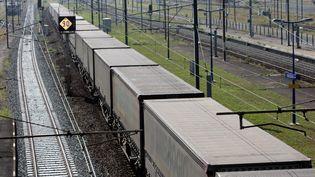 Un train de fret, le 25 septembre 2013 à Sélestat (Bas-Rhin). (  MAXPPP)
