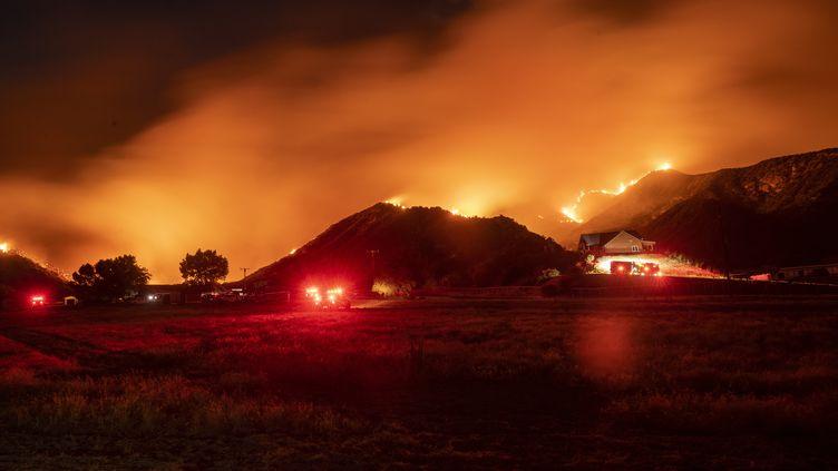 """L'incendie de l'""""Apple Fire"""", le 1er août 2020 à Banning (Etats-Unis). (JOSH EDELSON / AFP)"""