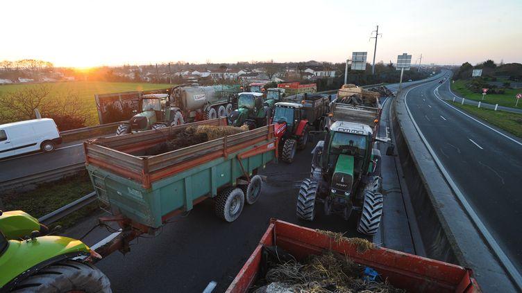 Des agriculteurs bloquent une route près de La Rochelle (Charente-Maritime) pour protester contre la baisse des prix, le 25 janvier 2016. (XAVIER LEOTY / AFP)